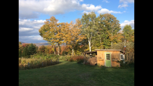 the beautiful view of the place where Zammuto makes his magic. We love those secluded, barn-like studios!